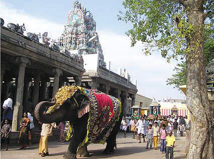 Kulandai Velalyudhaswami Temple